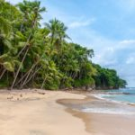 Biodiversity: Three calls for projects in French Polynesia