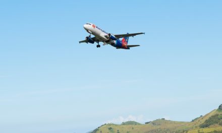 The New Caledonia-Wallis and Futuna bubble suspended